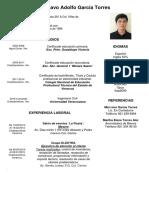 cv Gustavo Adolfo García Torres.docx