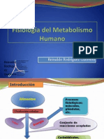 Fisiología del Metabolismo