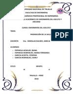 GUIA 2. INFORME MODELO DE LA PROMOCION DE LA SALUD.docx