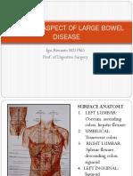 3. SURGICAL ASPECT OF LARGE BOWEL. PPTX.pdf