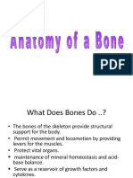 1. Anatomy of a Bone (10 files merged).pdf