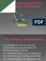 Aminoacidos,Peptidos Enzimas y Proteinas Exposicion Texnicas Del Aprendisaje Trabajo Completo