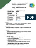 Silabo - SEMINARIO TEMAS EN ANTROPOLOGÍA.pdf