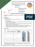 Informe-Antocianos.docx