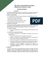 TÉRMINOS DE REFERENCIA - avance (01).docx