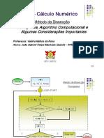 Metodo Bisseccao Fluxograma e Algoritmo