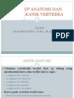 ANATOMI VERTEBRA.pptx