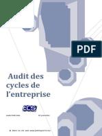 Audit des cycle de l'ese.pdf
