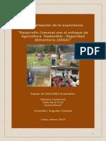 Diaconia_ Desarrollo Comunal con enfoque ASSA_Final.pdf