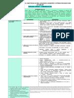 MATRIZDE DIVERSIFICACION 3DO - Vertical -.docx