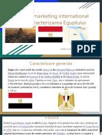 Proiect La Marketing International Tema_Caracterizarea Egyptului