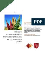Proyecto_socioproductivo_de_innovacion_a.docx
