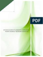 PUENTE PASARELA.pdf