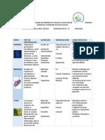 Documento 2.docx