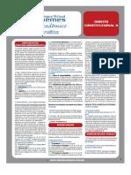 Guia Academico - 2009 - Constitucional 2