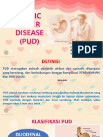 ppt PUD.pptx