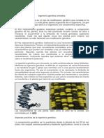 Ingeniería genética animales..docx