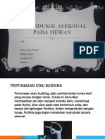 Reproduksi Aseksual Pada Hewan.pptx