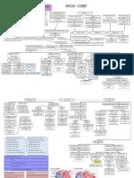CHF patway.pdf