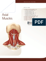 11. Axial Muscles.pdf