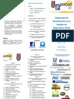 Diplomado FIN IPN (1)