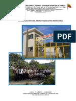 INFORME EJECUTIVO DEL PEI E.N.S. MONTES DE MARÍA.pdf