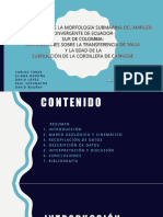 3. CARACTERÍSTICAS TECTÓNICAS FOSA Y MARGEN NORANDINO.pdf