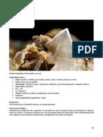 94 SP Compendio de Mineralogia