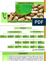 Documento de Apoyo Tipos de Biocombustibles Obtenidos de Biomasa