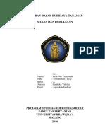 LAPORAN DASAR BUDIDAYA TANAMAN.docx