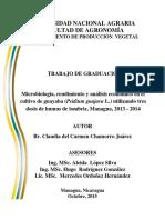 Microbiologia de la guayaba Chamorro Claudia.pdf