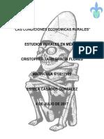 ensayo EE. Estudios Rurales.docx