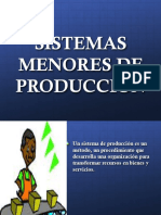 Sistemas Menores de Produccion