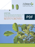 guia-mt.pdf