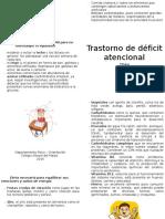 diptico TDA.doc