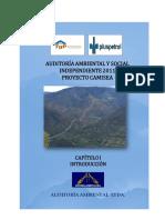 auditoria-ambiental-2-cap-1.pdf