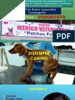 Distemper-Canino.ppt