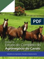 Revisão do Estudo do  Complexo do  Agronegócio do Cavalo - MAPA 2016.pdf