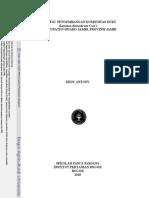 2010dan.pdf