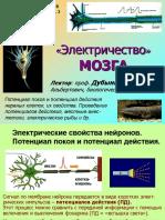 Lektsia_2_электрические процессы в мозге.pdf