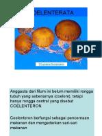Materi Kul. Bio Aver  (COELENTERATA).pdf
