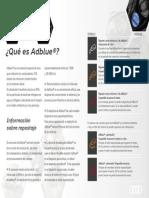 prsnt8_informe_adblue