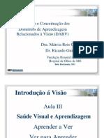 Aula 3 Dr. Ricardo Guimaraes Intro Fundacao Hospital de Olhos Curso Profess Ores Dislexia de Leitura
