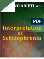 interpretation_of_schizophrenia.pdf
