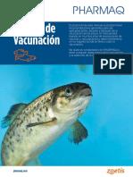 vacunas peces