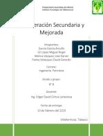 Recuperación Secundaria y Mejorada.docx