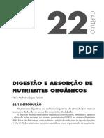 Processo de Disgestão e Absorção de Nutrientes.