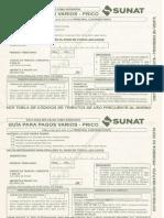 GUIAS BIEN.pdf