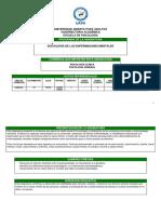 SOCIOLOGÍA PROGRAMA.pdf