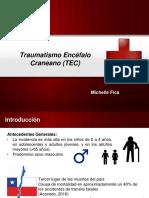 Presentación TEC